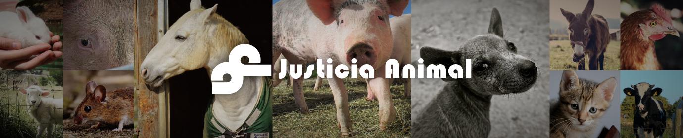 Justicianimal